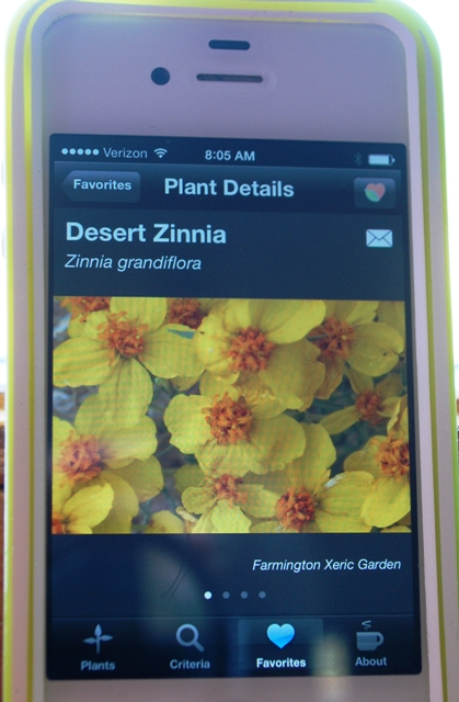 SW plants app zinnia photo